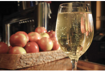 Buy CIDER MAKING Kits ONLINE